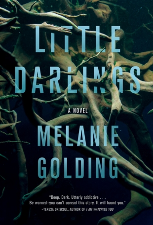 Blog Tour Review – LITTLE DARLINGS by Melanie Golding