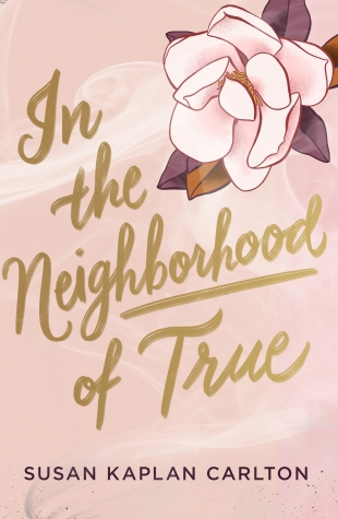 Blog Tour Review:  IN THE NEIGHBORHOOD OF TRUE by Susan Kaplan Carlton